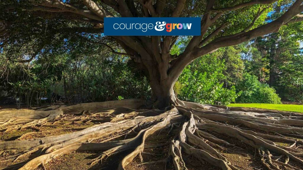tree in forest with roots business core values